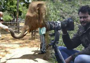 Yajamana Movie: ದಾಸನ ಕ್ಯಾಮರಾ ಕಣ್ಣಲ್ಲಿ ಸೆರೆಯಾದವು ಇದೀಗ ನಿಮ್ಮ ಮುಂದೆ