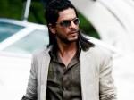 Shahrukh Khan Hire Bangalore Bakras For Bakrid Aid