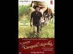 Bangara S O Bangaradha Manushya Official Teaser