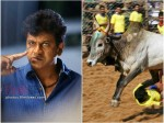 Shivarajkumar To Play Bull Taming Sport In Eesooru Dange