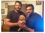 Actor Chiranjeevi Sarja Gifted Pet To Darshan