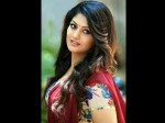Kannada Actress Radhika Kumaraswamy Speak About Political Entry