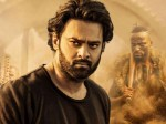Saaho 5 Days Collection Report