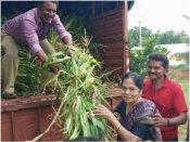 ಉತ್ತರ ಕರ್ನಾಟಕದ ಜಾನುವಾರುಗಳಿಗೆ ಮೇವು ನೀಡಿದ ನಟಿ ಲೀಲಾವತಿ