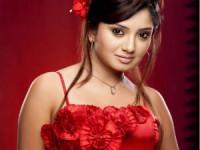 Heroine Priyanka Chandra Gowri Ganesh Celebration Aid
