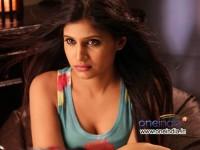 Kannada Actress Shweta Pandit Faces Eve Teasing Facebook