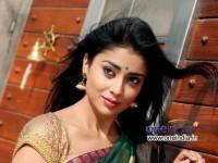 Shriya Saran Is Kmf Goodlife Brand Ambassador