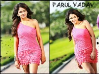 Parul Yadav Vaastu Prakara Narrowly Escapes Death