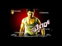 Mari Tiger Vs Tiger Film Title Controversy Kfcc
