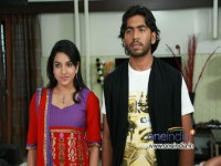 Kannada Movie Dove Critics Review