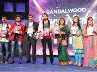 In Picks Sandalwood Stars Award Function