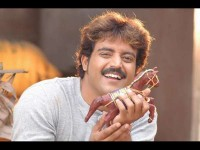 Actor Aniruddh Got Injured On Raja Simha Shooting Set