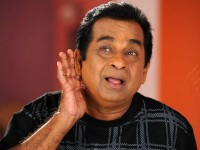 Telugu Comedian Brahmanandam Has Assets Over Rs 320 Crore