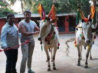 Challenging Star Darshan Visited His Farm House In Mysore Yesterday