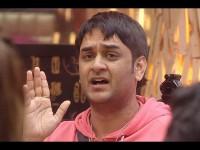 All About Bigg Boss 11 Grand Finalist Vikas Gupta