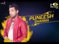 All About Bigg Boss 11 Grand Finalist Puneesh Sharma