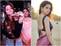 Actress Vedhika Acting With Python