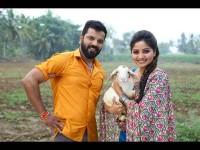Sathish Neenasams Ayogya Movie Kananda Movie Review