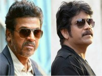Akkineni Nagarjuna Have Interested In Kannada Movie