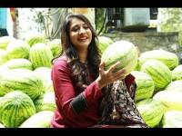 Sada Nimmondige Kannada Actress Manvitha Harish Sells Water Melon