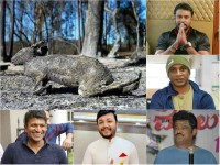 Kannada Stars Expressed Sadness Over The Fire Bandipura Forest