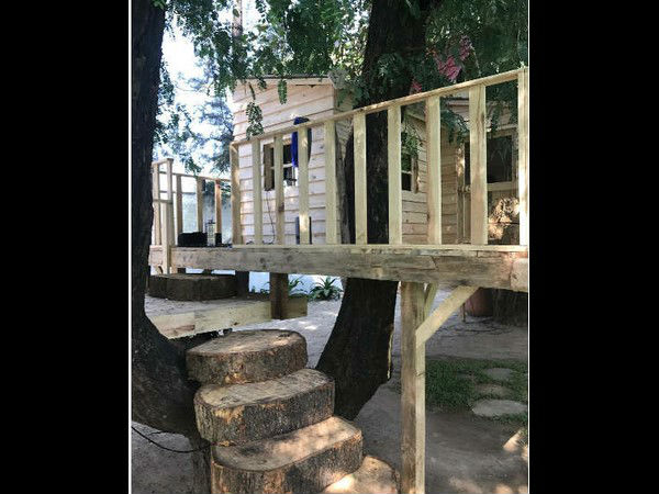 A tree house for Shahrukh Khans's three year old son.