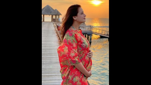 Dia Mirza Replies To A Troll Who Questions Her Pregnancy