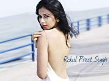 http://kannada.filmibeat.com/img/2014/02/27-rakul-preet-sing1.jpg