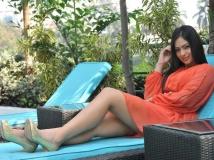 http://kannada.filmibeat.com/img/2015/01/17-1421473992-nikisha-patel.jpg