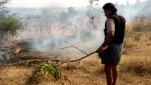 https://kannada.filmibeat.com/img/2020/02/leelavathi-vinod-raj-farm-fire-1582165205.jpg