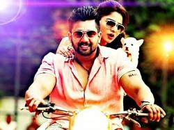 Watch Video Exclusive Chit Chat With Kannada Movie Bharjari Hero Dhruva Sarja