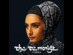 Ragini Dwivedi The Terrorist Movie Review