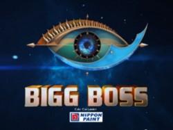 Superstar Actor Wife Participate In Bigg Boss Season 3