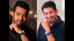 Mahesh Babu And Nr Ntr To Star Together In Allu Aravind Production