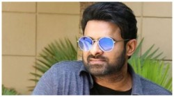 Actor Prabhas Getting Offers From Hollywood Movies